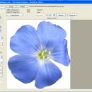 MosaicArtSoftware freeware screenshot