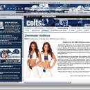 Indianapolis Colts NFL Firefox Theme freeware screenshot